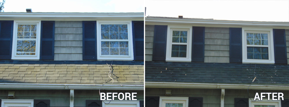 Before and After New Windows